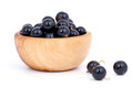 Fresh black currants Stock Photography