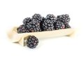 Fresh blackberries sweet tasty on white background Royalty Free Stock Photo