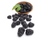 Fresh blackberry in basket with leaf Royalty Free Stock Photos