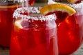 Fresh Blood Orange Margaritas Royalty Free Stock Photo