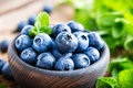 Fresh blueberries in bowl Royalty Free Stock Photo