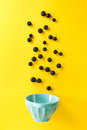 Fresh blueberries flying to blue bowl on yellow background. Food