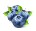 Fresh blueberries over white background Stock Photo