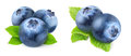 Fresh blueberries over white background Stock Photos