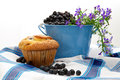 Fresh Blueberries In A Pail Royalty Free Stock Photos