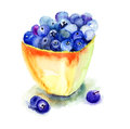 Fresh blueberries in plate watercolor illustration Stock Image