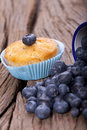 Fresh blueberry muffin a and an old enamel cup filled with blueberries on old wooden table Stock Photography