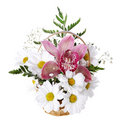 Fresh bouquet with daisy and orchid Royalty Free Stock Photos