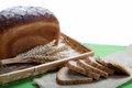 Fresh bread with ears of wheat on a canvas. Royalty Free Stock Images