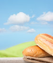 Fresh bread on textile burlab against rural background Royalty Free Stock Images