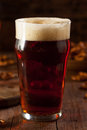Fresh brewed oktoberfest autumn ale in a pint glass Royalty Free Stock Image