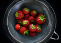 Fresh british strawberries backlit in a stainless steel sieve Royalty Free Stock Photo