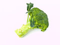 A fresh broccoli isolated on whit Royalty Free Stock Photo