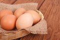 Fresh brown chicken eggs in a basket on sacking Royalty Free Stock Photos