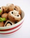 Fresh brown mushrooms Royalty Free Stock Photos