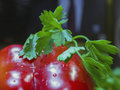 Fresh bulgarian pepper and parsley close up Royalty Free Stock Photo