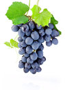 Fresh Bunch Of Grapes With Lea...