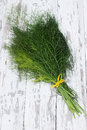 Fresh bundle of fennel on the wooden table Stock Image