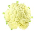 Fresh Cabbage Stock Photo