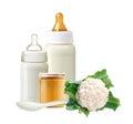 Fresh cabbage, baby milk bottles, jar of baby puree Royalty Free Stock Photo