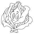 Fresh cabbage cartoon
