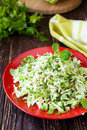 Fresh cabbage salad and chopped herbs closeup food Royalty Free Stock Images