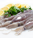 Fresh Calamari with Lemon Royalty Free Stock Photos