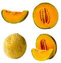 Fresh Cantaloupe Isolated Stock Image