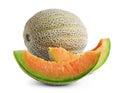Fresh cantaloupe melon Royalty Free Stock Photo