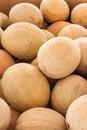 Fresh cantaloupes Royalty Free Stock Photo