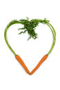 Fresh carrots in a heart shape made from organically grown fruit and vegetables are always healthy symbolic photo for healthy Stock Image