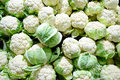 Fresh cauliflower in boxes heap ripe supermarket top view Royalty Free Stock Photos