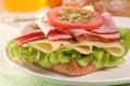 Fresh cheese & ham sandwich Royalty Free Stock Photo