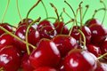 Fresh cherrie cherries with green background shallow dof Royalty Free Stock Image