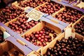 Fresh cherries in box at a farmers market Royalty Free Stock Photos