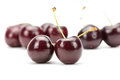 Fresh Cherries fruit isolated on white Royalty Free Stock Photo