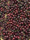 Fresh cherries in the fruit store Royalty Free Stock Photo