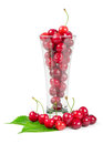 Fresh cherries with glass Royalty Free Stock Photo