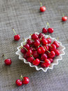 Fresh cherries juicy and organic Royalty Free Stock Images