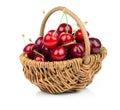 Fresh cherries in a wicker basket Royalty Free Stock Photo