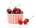 Fresh cherry berries in striped bucket on white background Royalty Free Stock Photography