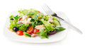 Fresh chicken salad Royalty Free Stock Photos