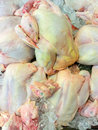 Fresh chickens for sale Royalty Free Stock Photo