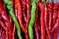 Fresh chili in red and green slim chilli as food or ingredients shown as agriculture industry concept color compare Royalty Free Stock Photos