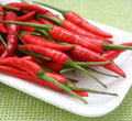 Fresh chilis Stock Image