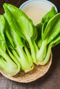 Fresh Chinese cabbage or Bok Choy vegetable Royalty Free Stock Photo