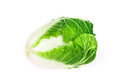 Fresh chinese cabbage which look like human head  on a white bac Royalty Free Stock Photo