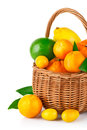 Fresh citrus fruit in the basket with green leaf Royalty Free Stock Image