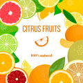 Fresh Citrus fruits ornament for postcard, greetings, wish card