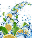 Fresh citruses in water splash with ice cubes Royalty Free Stock Images